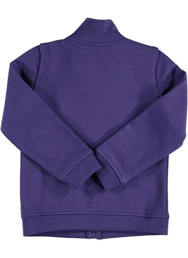 Sweatshirt-012